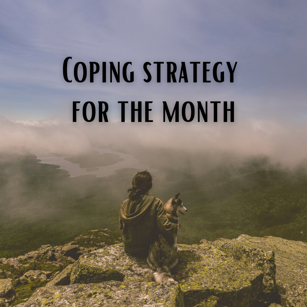 Click here for the Coping Strategy for January