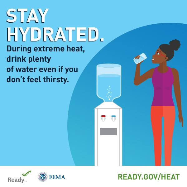 Stay Hydrated (English)